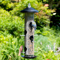 Giant Seed Bird Feeder