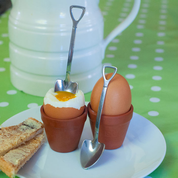 Plant Pot Egg Cup and Spoons