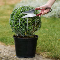 Ball Topiary Frame