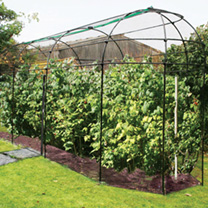 Image of Long Narrow Fruit Cage with Zip Net