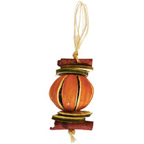 Orange Tree Decoration
