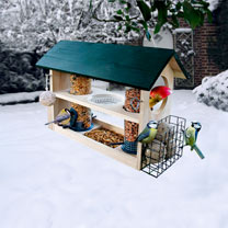 Deluxe Bird Feeder 8 in 1