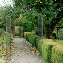Old Rectory Rose Arch