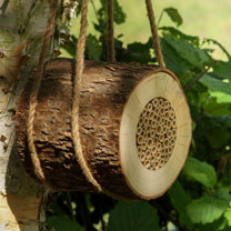 Pollinating Bee Logs