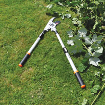 Telescopic Ratchet Lopper
