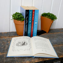 A pair of terracotta half-plant pots specially adapted into bookends. A leak-proof design, they come with two metal L shaped brackets so you can remov