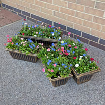 Trough Style Plastic Planters - Set of 2 Large and get 2 Small FREE