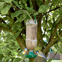 Image of Bird Feeder and Hydration Station