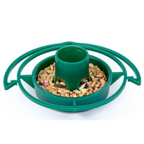 Bird Feeder Kit