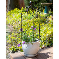 Scroll & Ivey Mini Pot Trellis