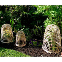 Bamboo Bell Cloches