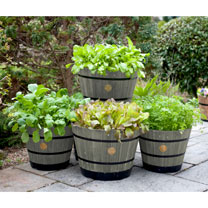 Wooden Barrel Planter LARGE - Grey Wash (Pair)