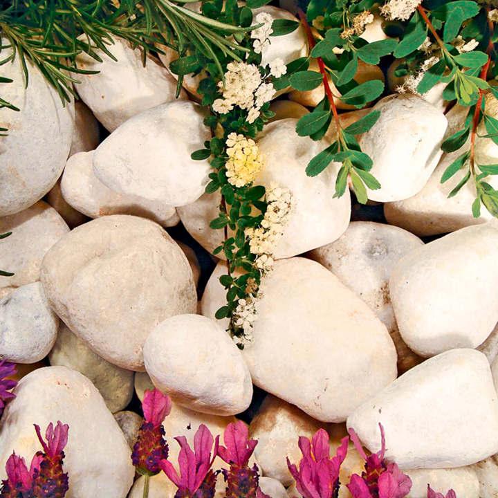 Coral White Pebbles - Bulk
