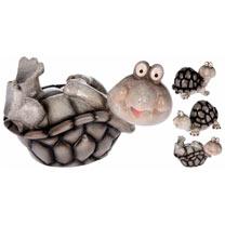 Garden Snail Offer