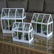 Set of 3 Glass House Terrarium