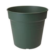 Leaf Green Grow Pot + House + Saucer