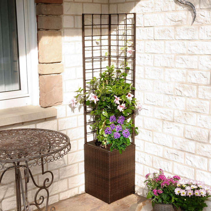 Square Rattan Planter with Trellis & Irrigation System