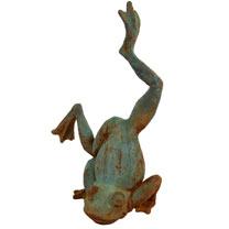 Acrobatic Frog