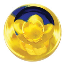 Paperweight - Daffodil