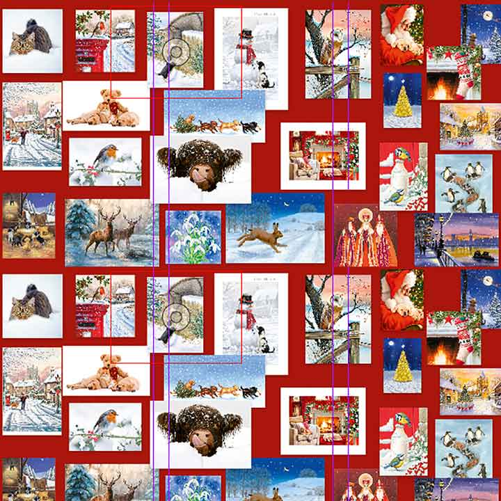 PDSA Bargain Pack of Christmas Cards
