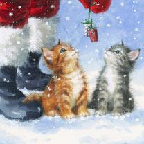 Santas Here Cards