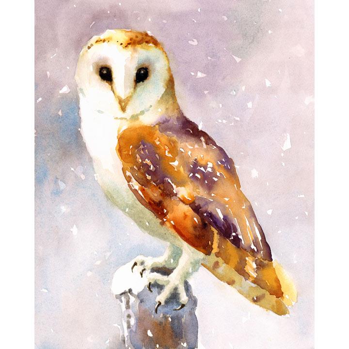 Christmas Owl Cards