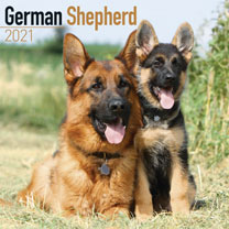 Dog Breed Calendar - German Shepherd