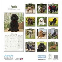 Dog Breed Calendar - Poodle