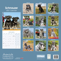 Dog Breed Calendar - Schnauzer