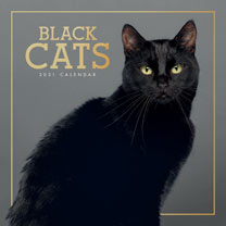 Wall Calendar - Black Cats