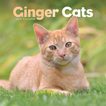 Wall Calendar - Ginger Cats