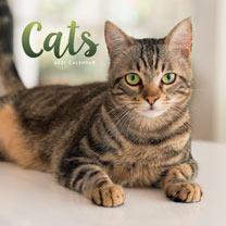 Wiro Calendar - Cats
