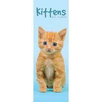 Slimline Calendar - Kittens