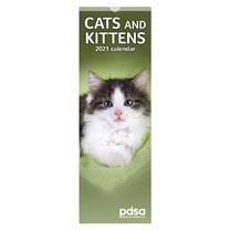 PDSA Slimline Calendar