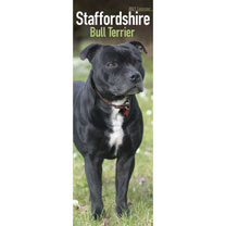 Slimline Calendar - Staffordshire Bull Terrier