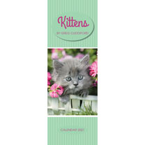Greg Cuddiford Kittens Slim Calendar