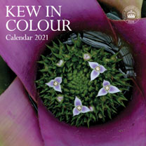 Wall Calendar - Kew in Colour