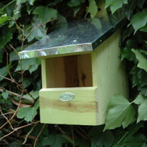 Robin/Flycatcher Nesting Box