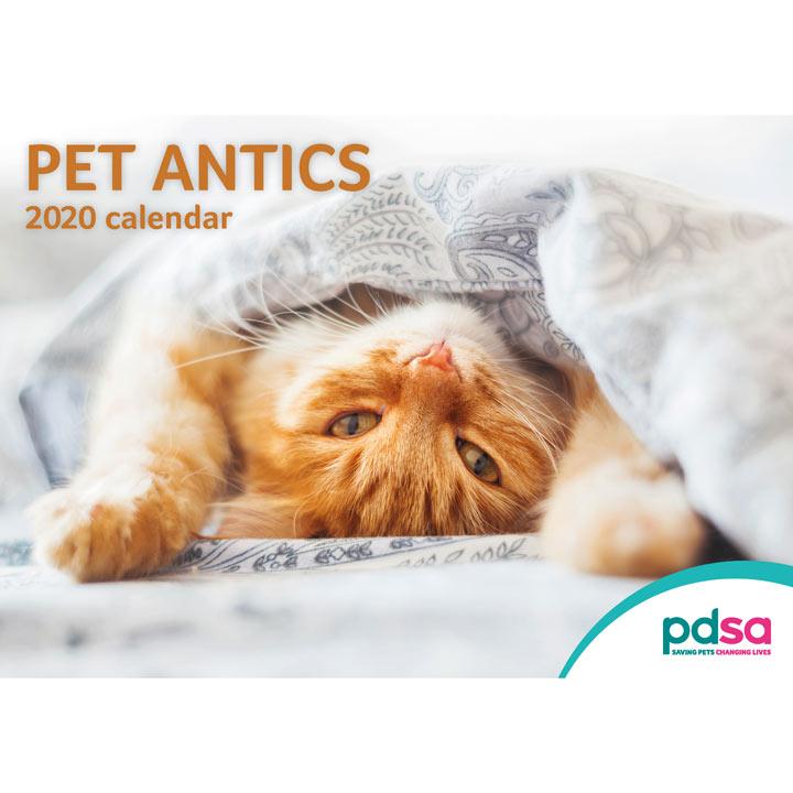 PDSA Animal Antics Calendar