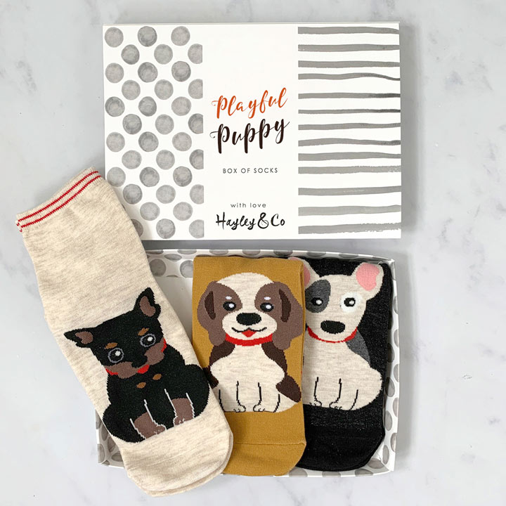 Puppy Dog Box of Socks