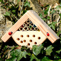 Specifically designed for children Bobbys Bug Box provides overwintering protection for insects such as ladybirds. Project book included. 12 x 11 x 10