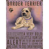 Border Terrier Metal Sign