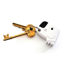 Dog Key Finder