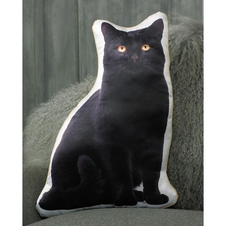 Cushion - Black Cat 49 x 35cm