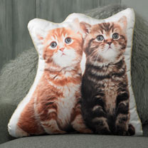 Cushion - Kitten 48 x 50cm