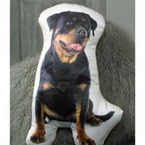 Cushion - Rottweiler 50 x 32cm