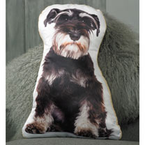 Cushion - Dog