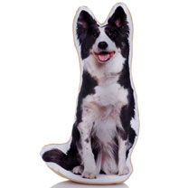 Doorstop - Border Collie