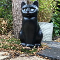 Black Cat Watering Can