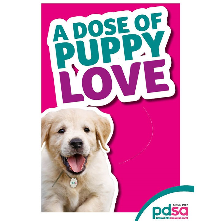 'A Dose of Puppy Love'